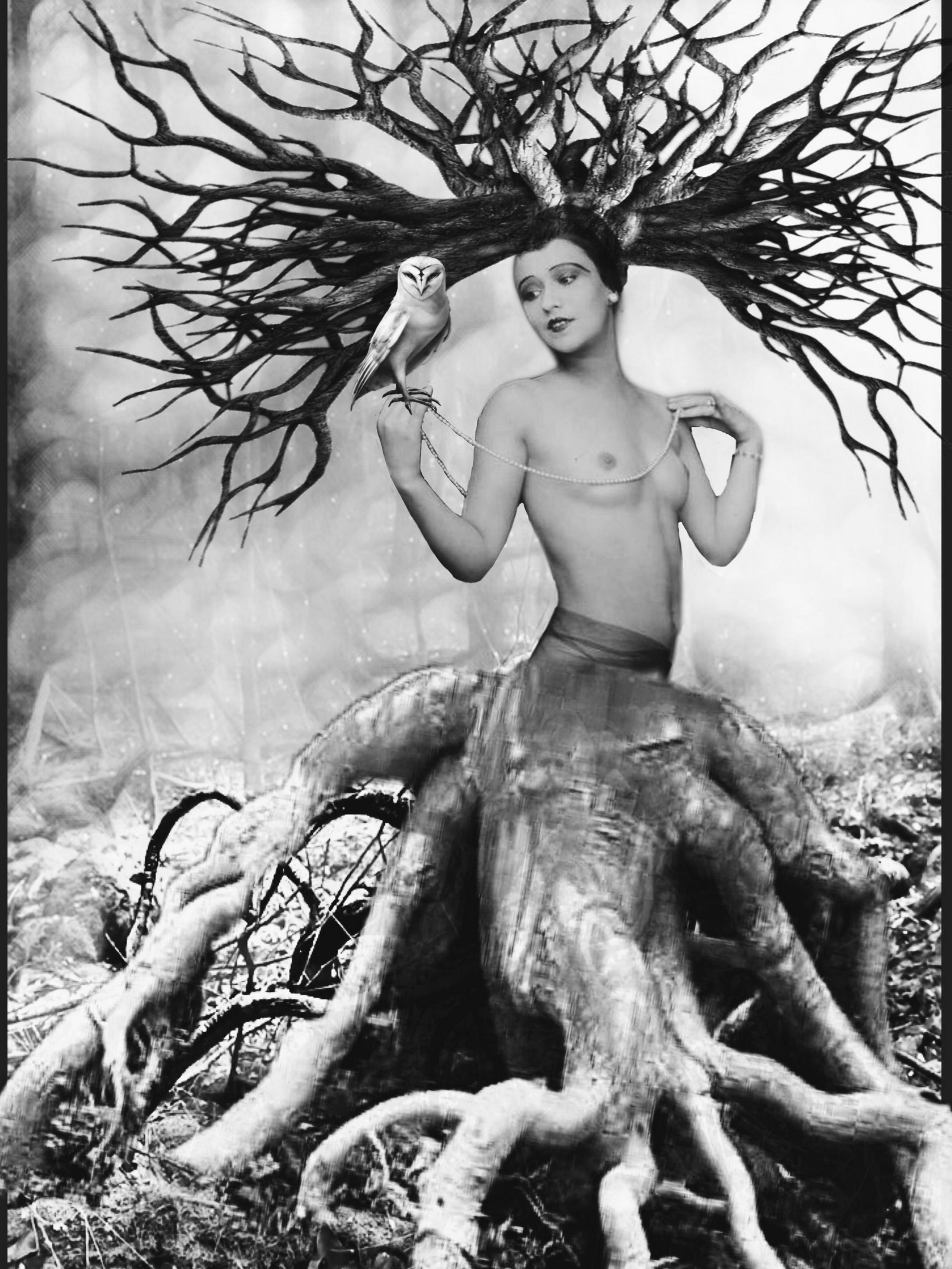 femme forêt 2