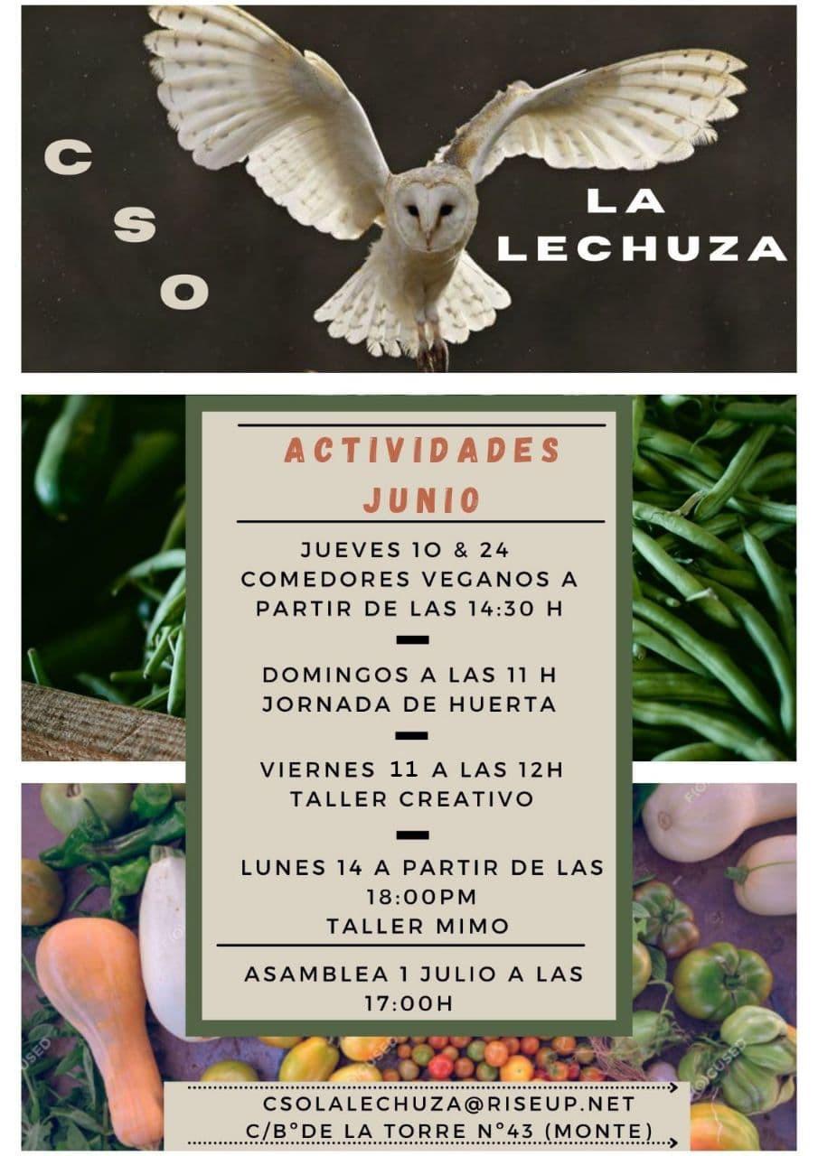 ACTIVIDADES JUNIO CSO LA LECHUZA