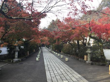 いいな、京都。