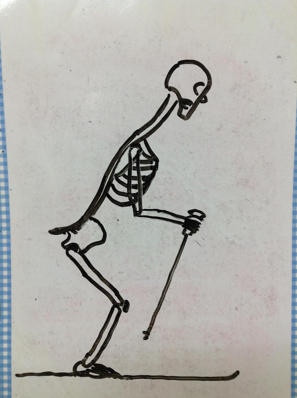 スキー 姿勢 骨格