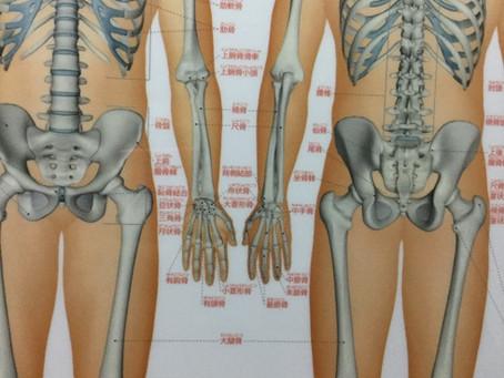 スキー 股関節が上手く動かすために、必要な意識のしかた