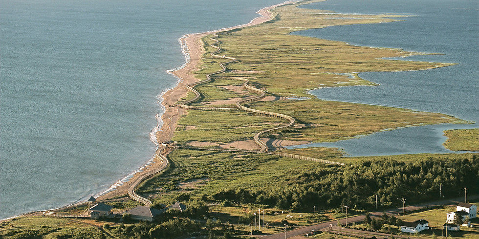 Canaan Bog to Bouctouche