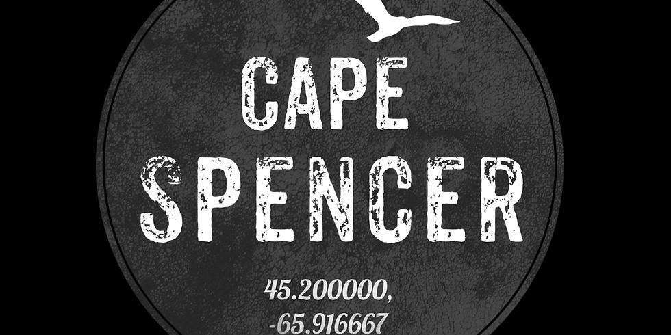 Cape Spencer