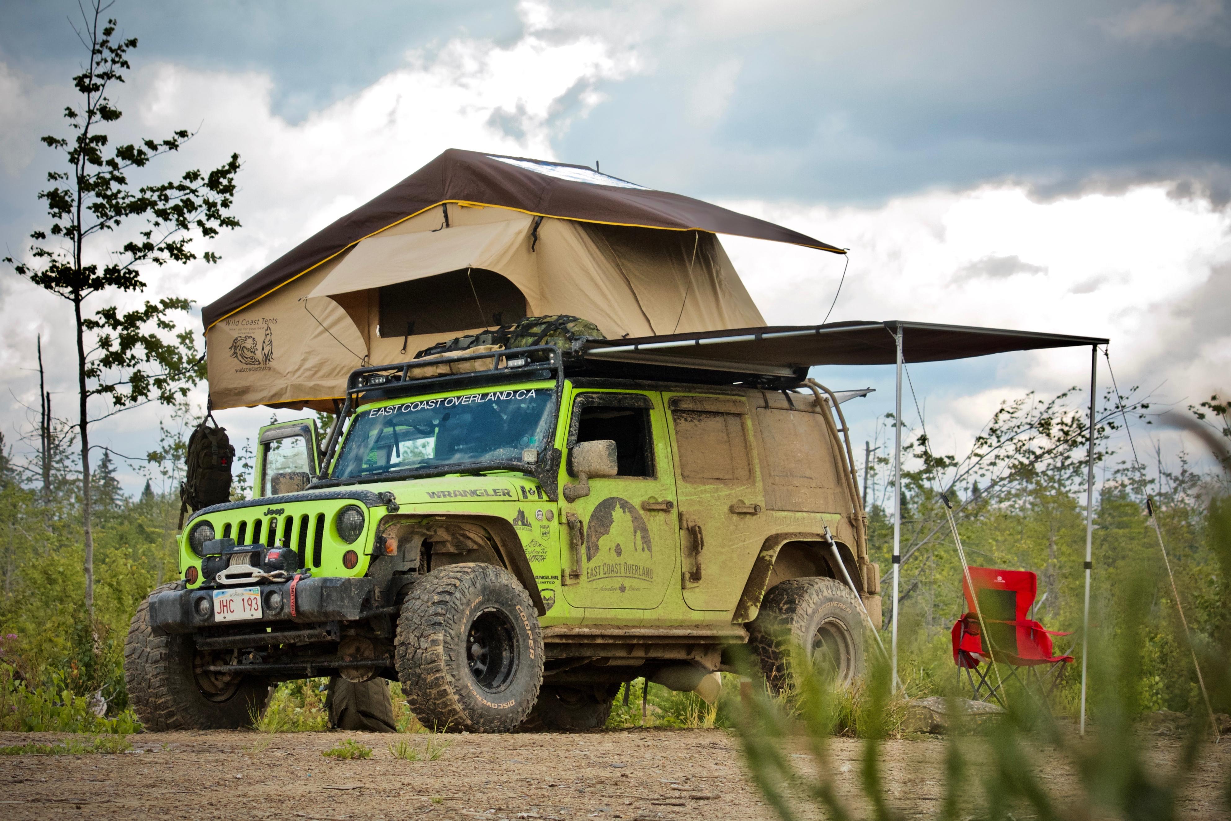 Gecko Camp