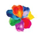 Rose Petal.PNG