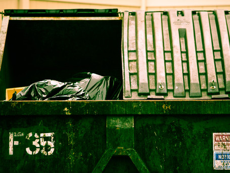 Beauty in the Garbage