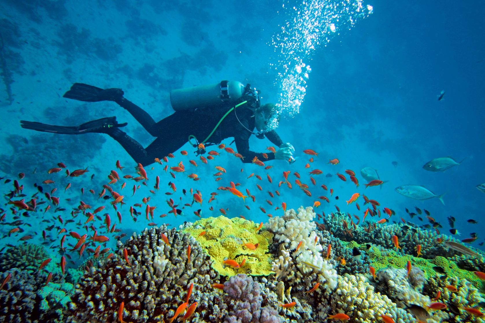 Scuba-Diving-in-Andaman-Island-3