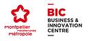 bic logo .png