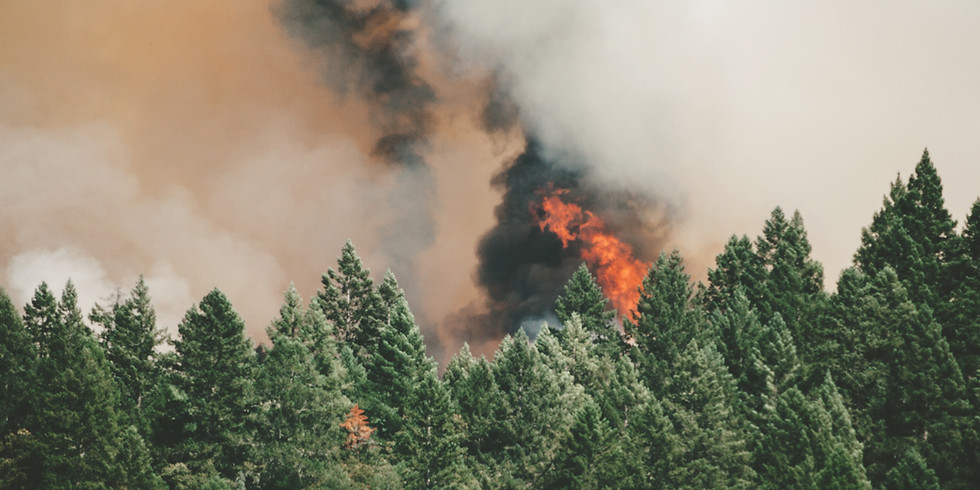 Exploring Cultural Influences on Fire Management in Oregon