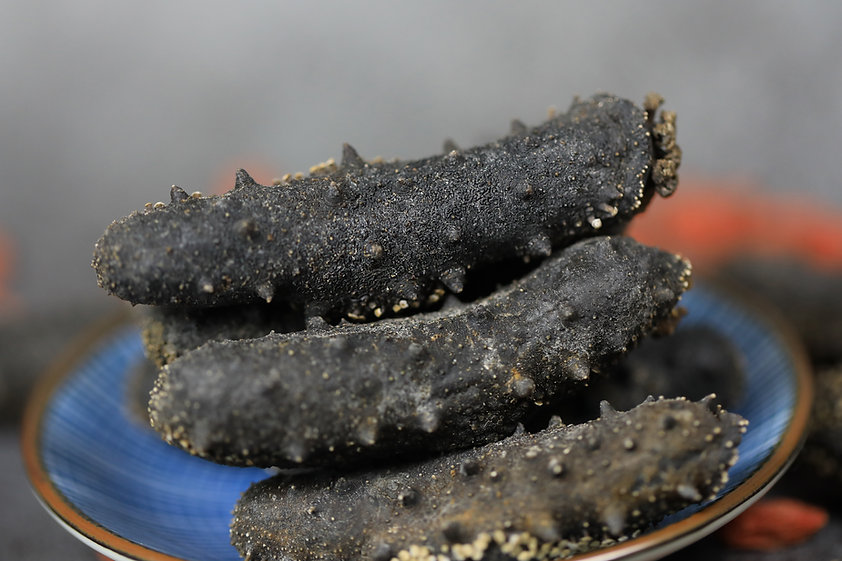 Dried sea cucumber nourishing food  .jpg