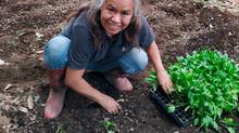 Mujeres productoras en Morelos en tiempos del COVID-19