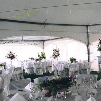 Tent Wedding Set Up