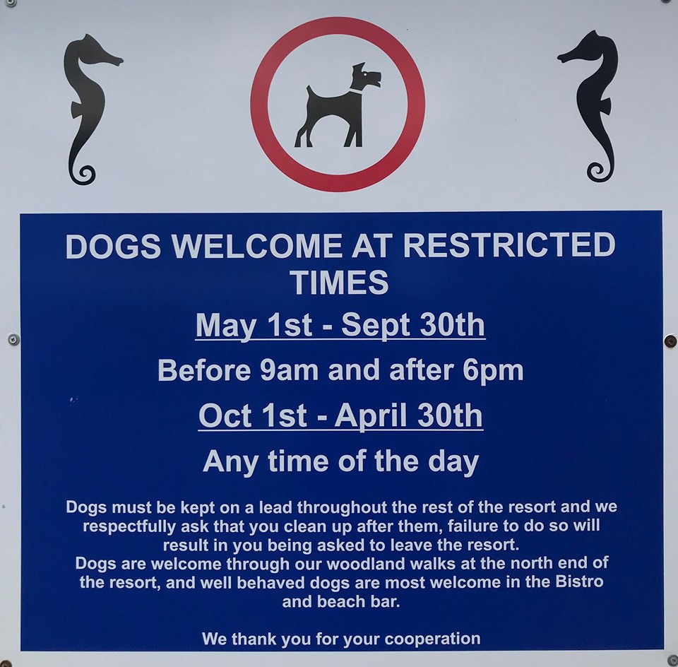 Millendreath Beach is a dog friendly beach all year, with restricted times in the summer months