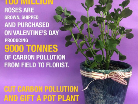 Cut the carbon this Valentine's Day