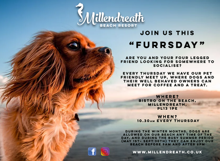 Furrsday - Our weekly dog meet group