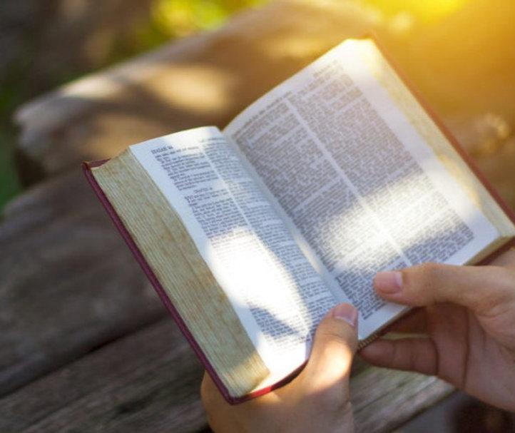GOD-TV-Todays-Bible-Reading-800x510_edited.jpg