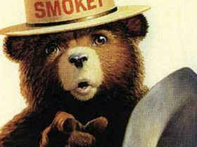 Smokey The Bear Says You Can Now Choose Four Friends To Help You Prevent Forest Fires