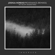 Joshua Moreno - Provenance (Remixes)