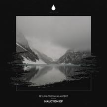 Feyln Halcyon EP - Album Artwork.jpg