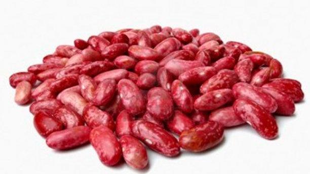 Fréjol rojo tierno