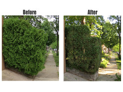 before-and-after-1-2c9