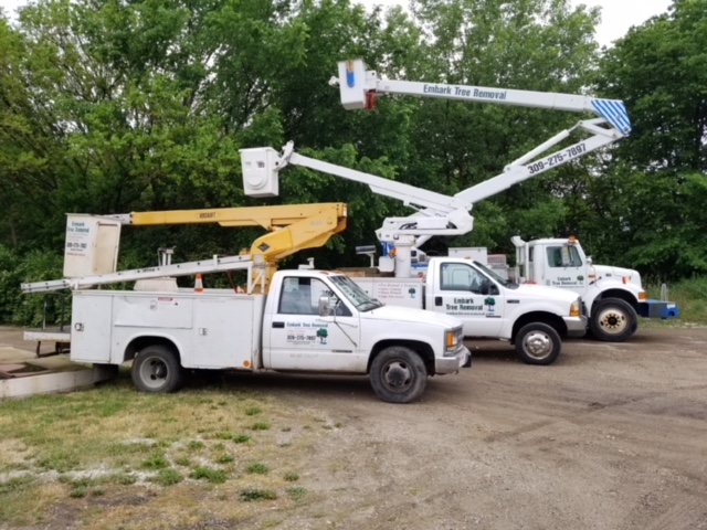 Embark-Tree-Removal-3-Bucket-Trucks