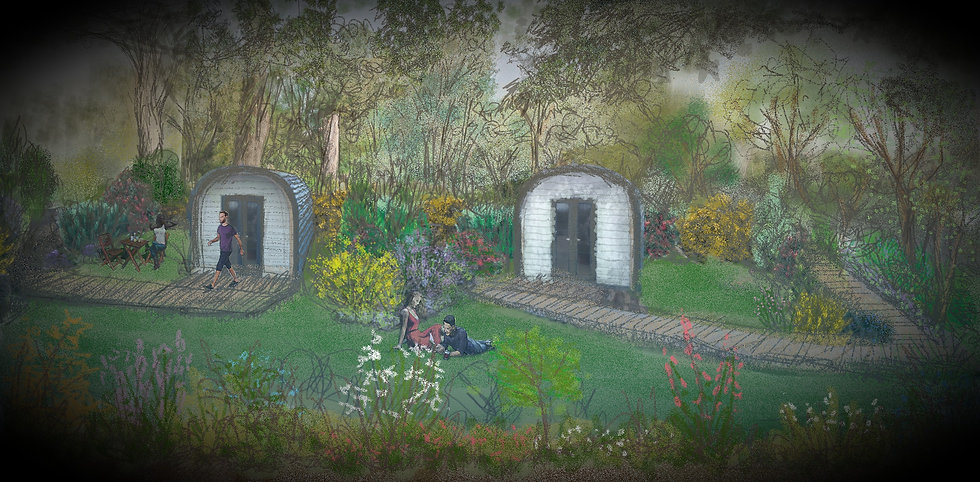 Emlyn's Coppice artist's impression by Niki Holmes at Art Emphasis