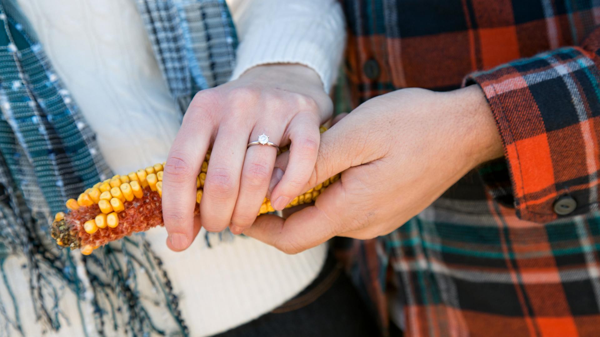 Farm Engagement Ring Minnesota Photo