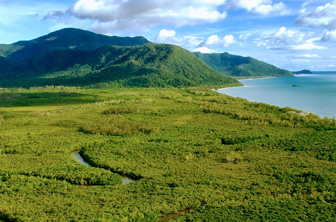 The Daintree coast