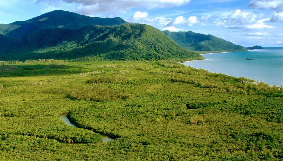 The Daintree coast