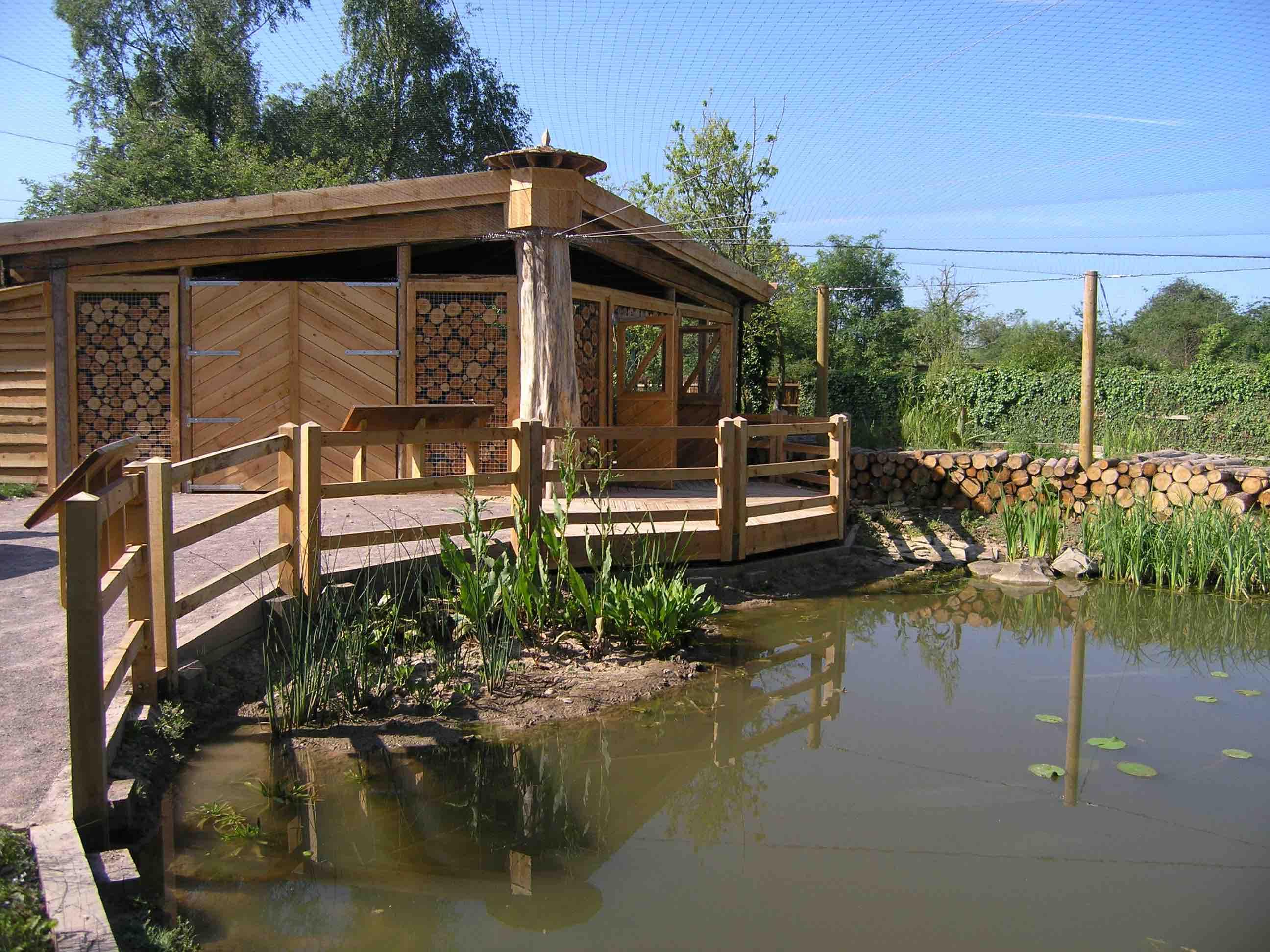 Slimbridge WWT 'Pondzone'P1010140