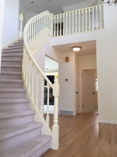 Painted Handrail and Walls