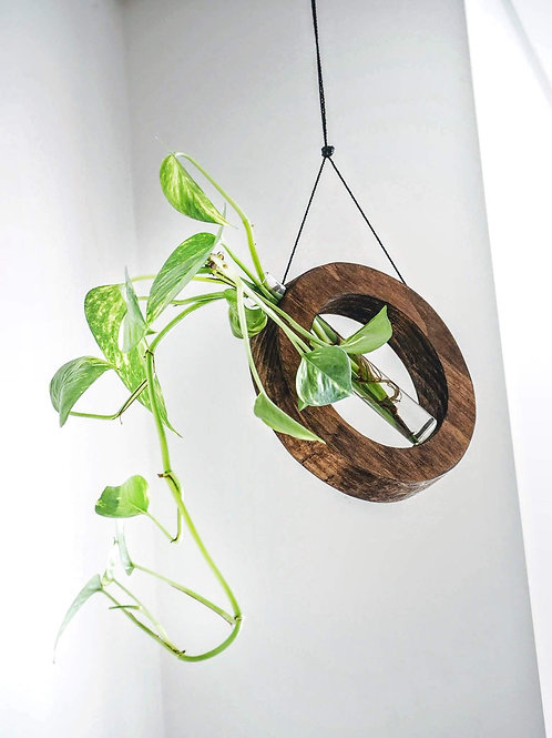 Mobile plant hanger in dark