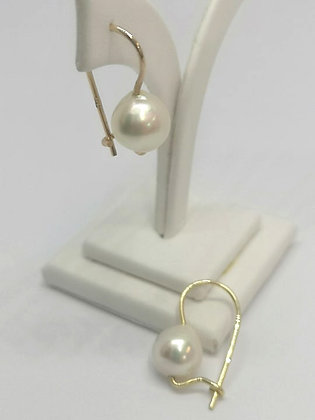 Akoya Pearl hook earrings