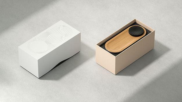 NOE - Speaker Packaging.jpg