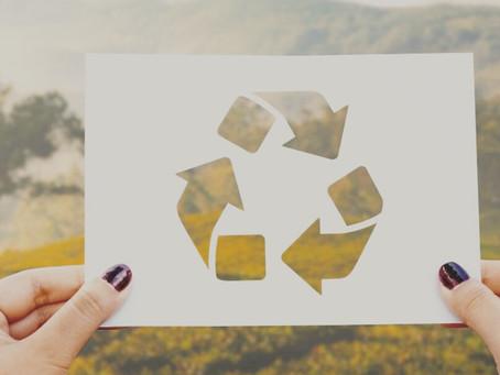 Reciclando   Reciclyng