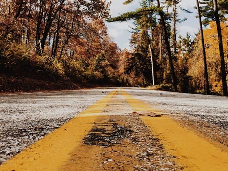 Un viaje hacia una vida consciente   A trip to a consciencious life