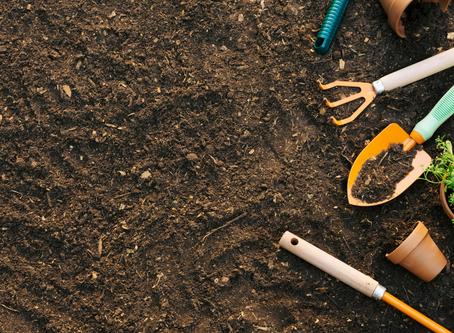 Composta | Compost