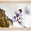 Thumbnail: Cadre en bois - Abricotiers de Saxon