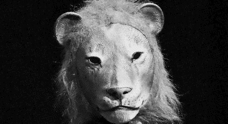 Diotime et les lions, version in-situ