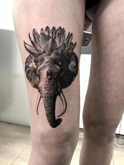 tattoo elephant black corner tattoo