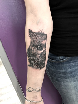 tatouage chat black corner tattoo