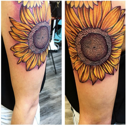 3rd session sunflower!