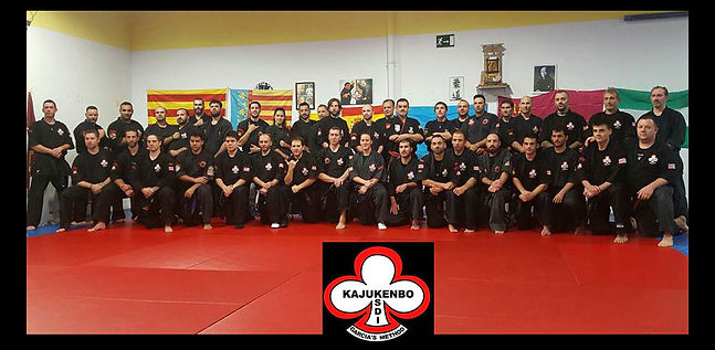 V MEETING INSTRUCTORES KAJUKENBO GARCIA´S METHOD CDE FRESNOS Torrejón de Ardoz (Madrid)