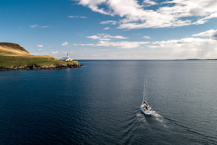 Shetland Barba (Arctic Whale)