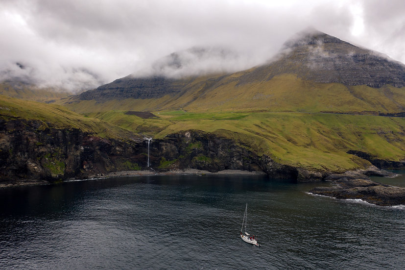Færøyene Barba (Arctic Whale)