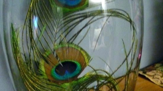 Fulwari Peacock feathers centerpiece with round glass vase
