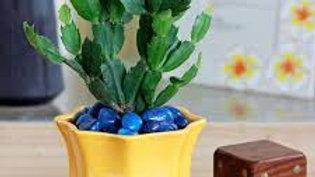 Star Ceramic Pot- 4 Inch