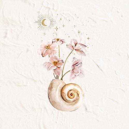 Seashells & Stars 02 - By Brigitte May
