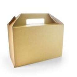 Large Carry Pack -  Length 10.43 Width 7.09 Height 4.92
